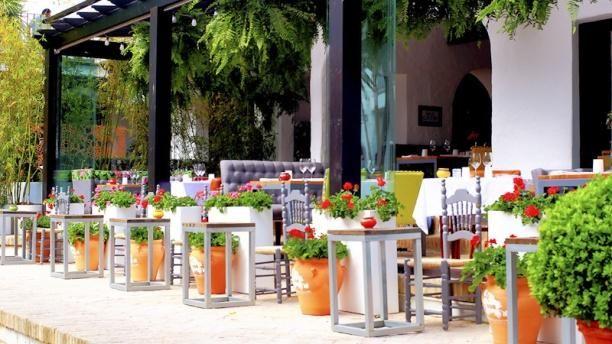 Marbella - New Dani García's BIBO. Excellent!