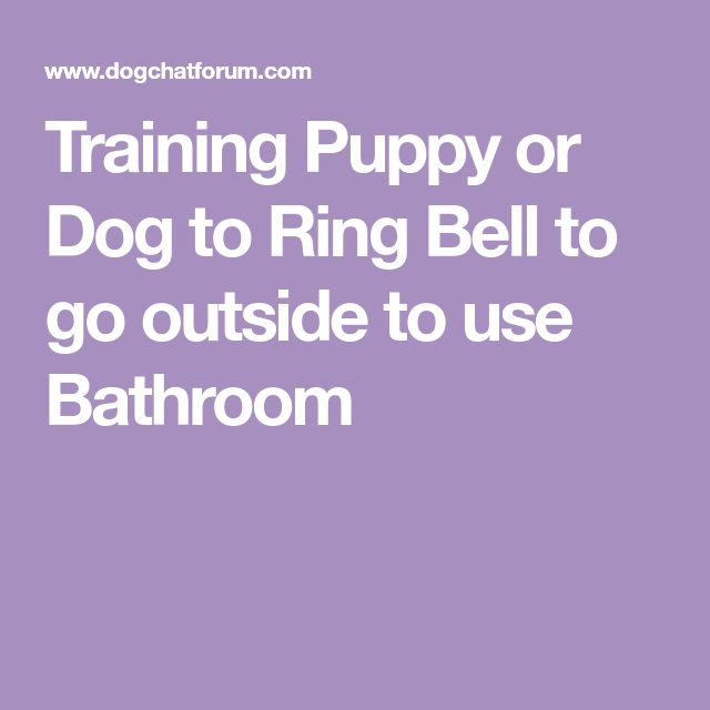 Training Puppy or Dog to Ring Bell to go outside to use Bathroom