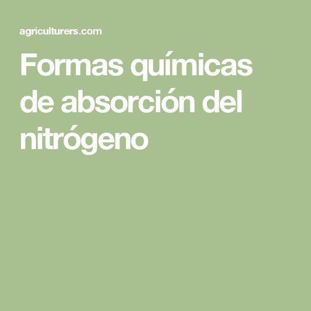 Formas químicas de absorción del nitrógeno