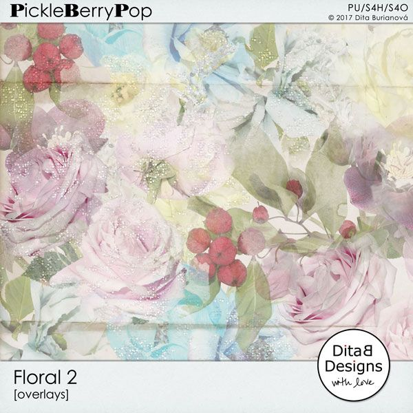 DitaB Designs: NEW - Floral 2 (overlays)30% OFF for a limited ...
