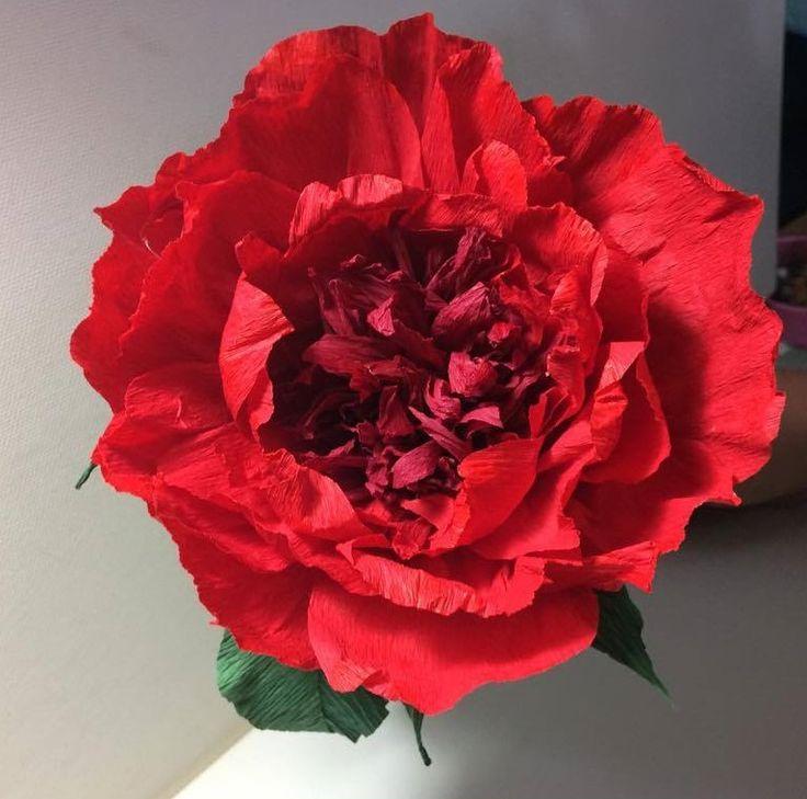 #crepepaper #peony #paperflowers #peonia di #cartacrespa #fioridicarta