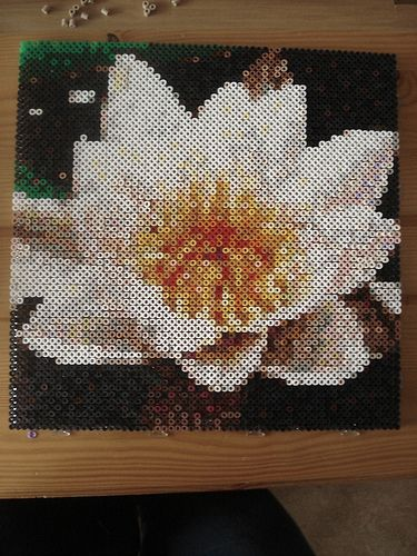 Water lily hama perler beads by Edvind Medvind