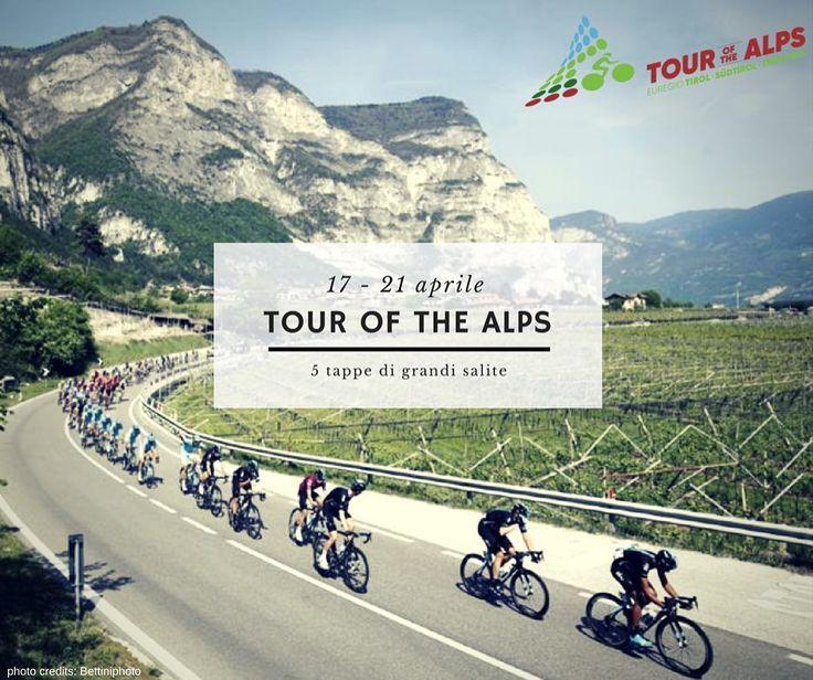 Il 17 aprile parte il Tour of the alps. Gli atleti competeranno su salite spettacolari per giungere a Trento al traguardo il 21. Il sostegno degli appassionati sarà fondamentale per affrontare tale sfida. #tourofthealps #grandisfide #grandisalite #grandeciclismo #girodeltrentino #cyclingrace