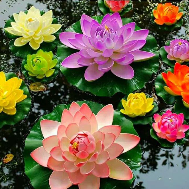 340 best flor de loto images on pinterest flowers garden lotus foto flowers giflotus mightylinksfo