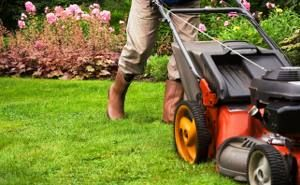 Promo Lawns provide best lawn mowing services in Northern Virginia. We provide all caring possible solutions for your beautiful lawns. Contact at 703-957-4880.