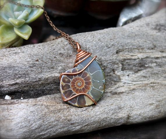 Ammonite Necklace  Fossil Jewelry  by MermaidTearsDesigns on Etsy