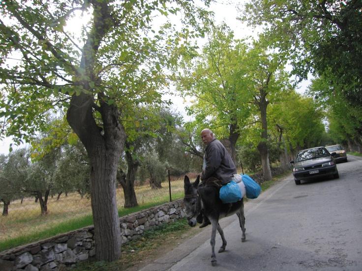 The island of Lesvos Greece