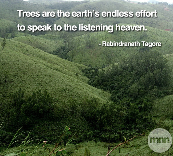 900 Best Images About India Kerala On Pinterest: #naturequotes #tagore