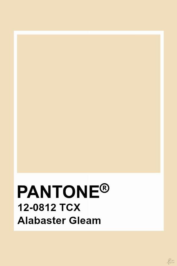 Pantone Alabaster Gleam Pantone Colour Palettes Yellow Pantone
