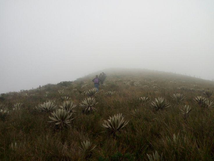 Cerros Orientales de Bogotá