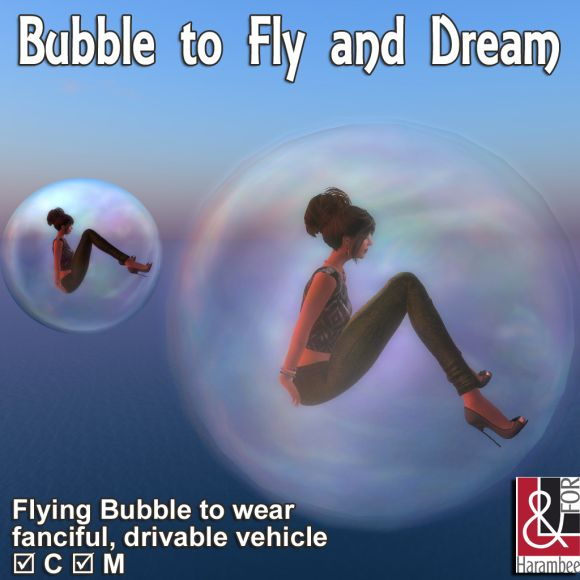 bubble-to-fly-and-dream-pic-1024