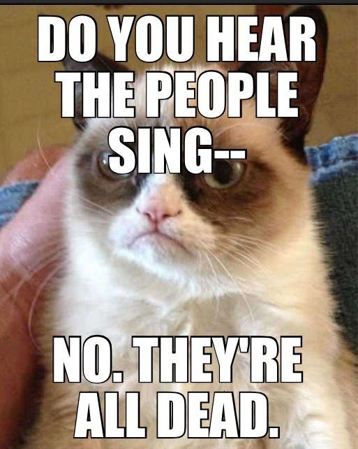 Grumpy cat. Les miserables. Funny