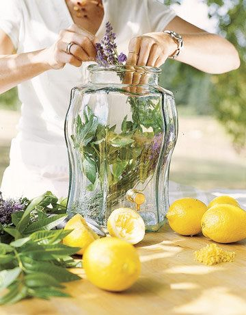 Lavender Verbena Tea:    A simple mix of lemon verbena and a little bit of lavender. You don't need too many lavender blossoms to really create a floral-tasting herbal tea.    Ingredients:    · 1 cup lemon verbena leaves  · 3 tbs lavender flowers    Preparation:  Mix herbs thoroughly, store in an air tight container. For tea, use 1 tsp in cup of boiling water. Steep for 5 minutes, strain out the leaves. Enjoy with a bit of honey. A slice of fresh squeezed lemon will add a little kick.