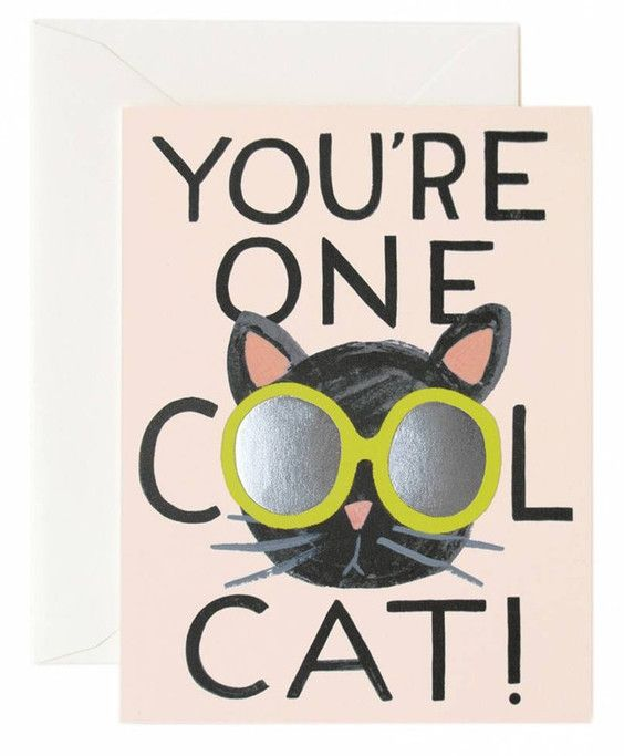 You're one cool cat!