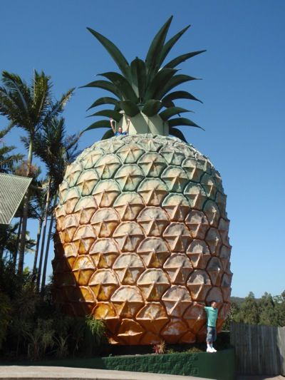 The Big Pineapple, Australia Woombye QLD https://www.timeblend.com/vibes/localculture