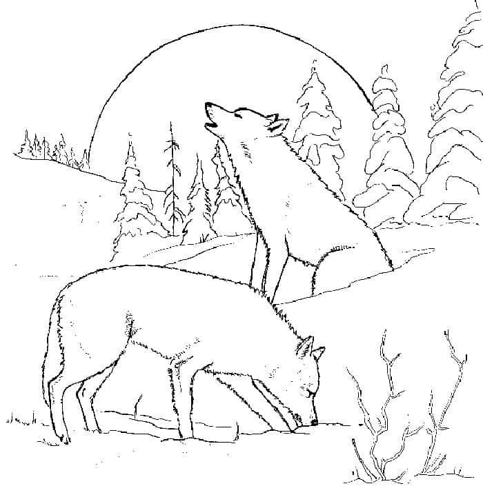 Anime Christmas Wolves Coloring Pages Animal Coloring Pages Deer Coloring Pages Dog Coloring Page