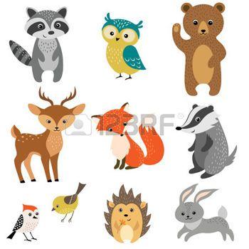 animaux de la forêt: Ensemble de mignons animaux des bois isolé sur fond blanc.