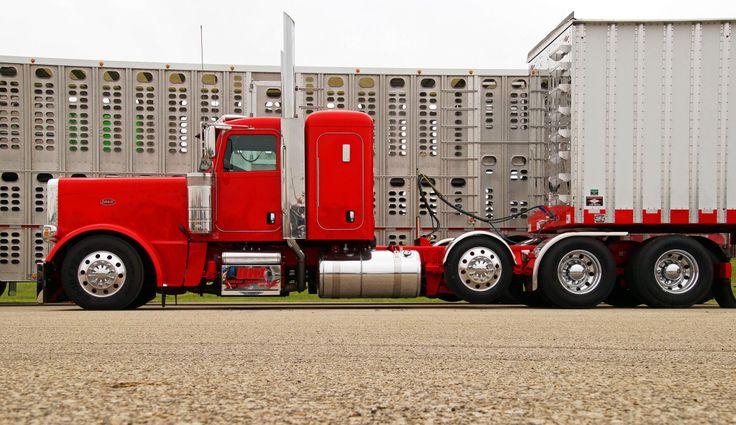 Semitrckn — 2015 Peterbilt custom 389 heavy haul