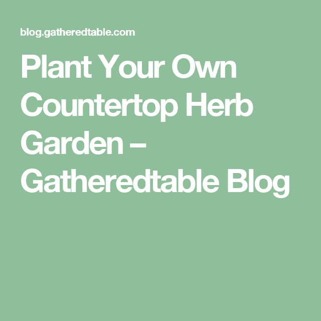 Plant Your Own Countertop Herb Garden – Gatheredtable Blog 640 x 480