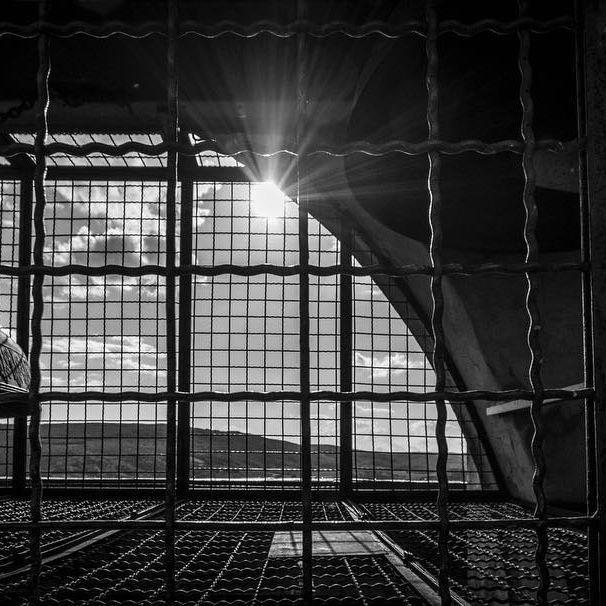 San Gimignano - Torre Civica. www.luisaquaglia.com  #igersiena #igersangimignano #photography #igersitalia #photooftheday #picoftheday #blackandwhite #towerbell #nikon #tuscany #landscape #sun #follow4follow #like4like #likeforlike #chianti #fotografia #toscana #bestphoto #instapic #instaphoto #igertoscana #graphic #digitalartist #art #arte #popart #visualart #design #graphicart