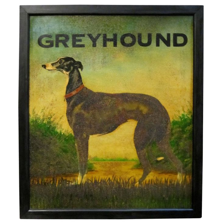 Image result for pub signs of dogs