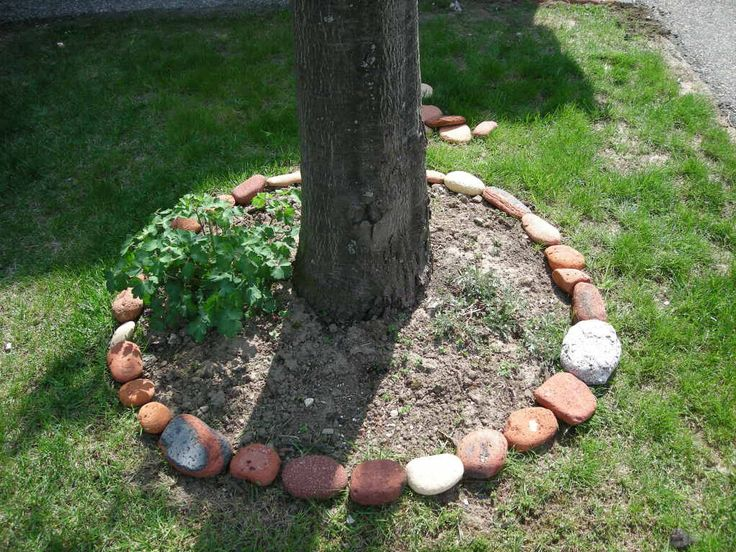 diy landscaping on a budget ideas 2015 ideasdecoracioninteriores