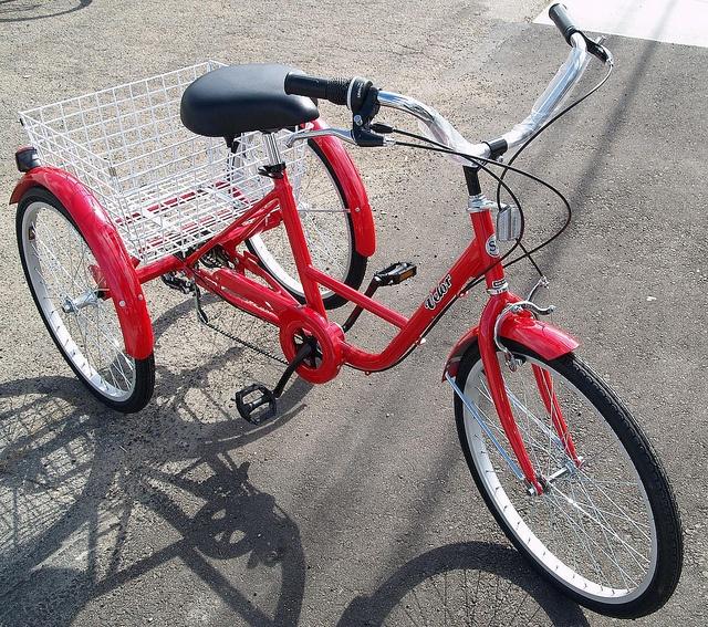 3 wheel adult trike