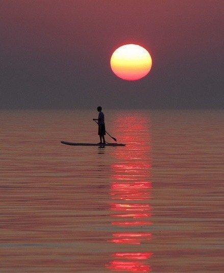 the sunset ,the lonely boat , the fisherman's song, the pole and the world: Nature, Beautiful, Sunsets Sunrises, Sunrise Sunset, Paddle Boarding, Surf, Sunset Paddleboarding, Photography