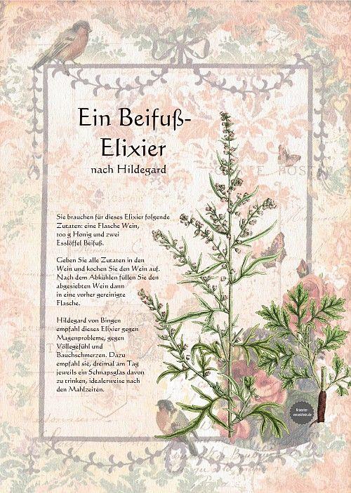 www.kraeuter-verzeichnis.de Heilwein-Heilschnaps ein-beifuss-elixier-nach-hildegard-von-bingen-amp.shtml