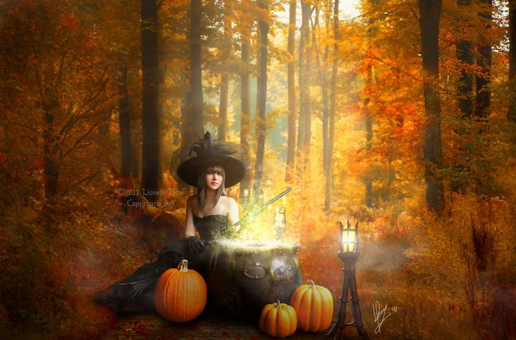 51 best images about halloween backgrounds on Pinterest