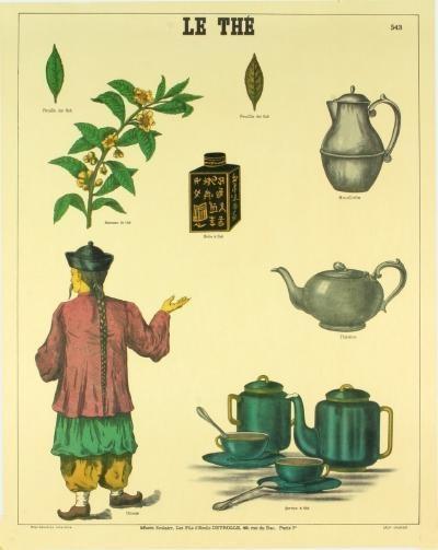 Émile Deyrolle Le Thé (Tea History) Poster
