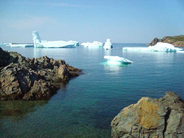 The icebergs at Twillingate