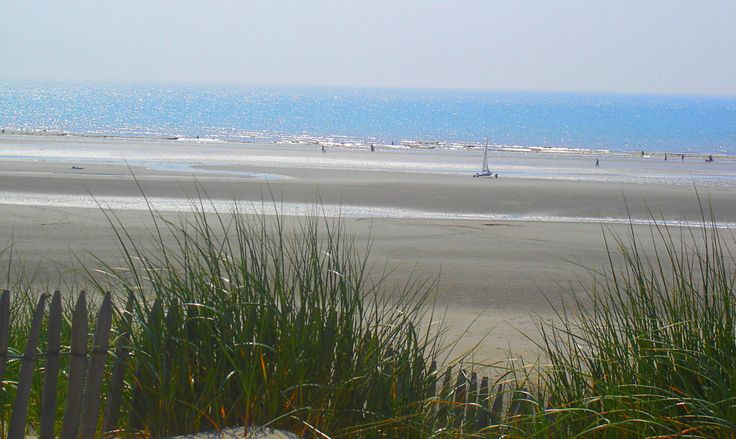 Plage de sable fin, dunes, char à voile