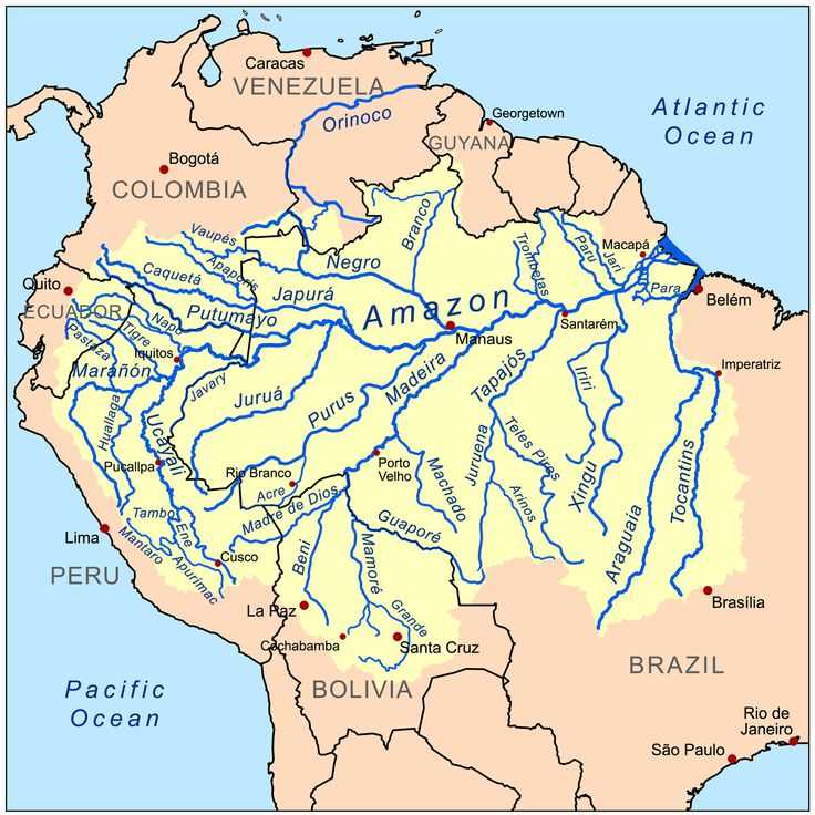 The Amazon River Basin is fed by over a thousand tributaries and includes parts of Brazil, Bolivia, Peru, Ecuador, Columbia, Venezuela, Guyana, Suriname, and French Guiana.