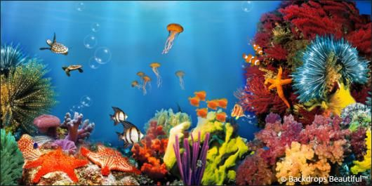 Coral Reef. #underthesea #backdrops