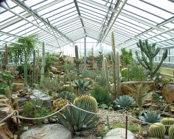 A Cactus Haven greenhouse for the winter months!!!!   THIS I must do!!