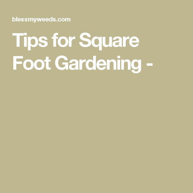 Tips for Square Foot Gardening -
