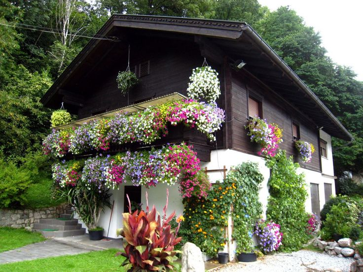 Темный дом шале с цветником