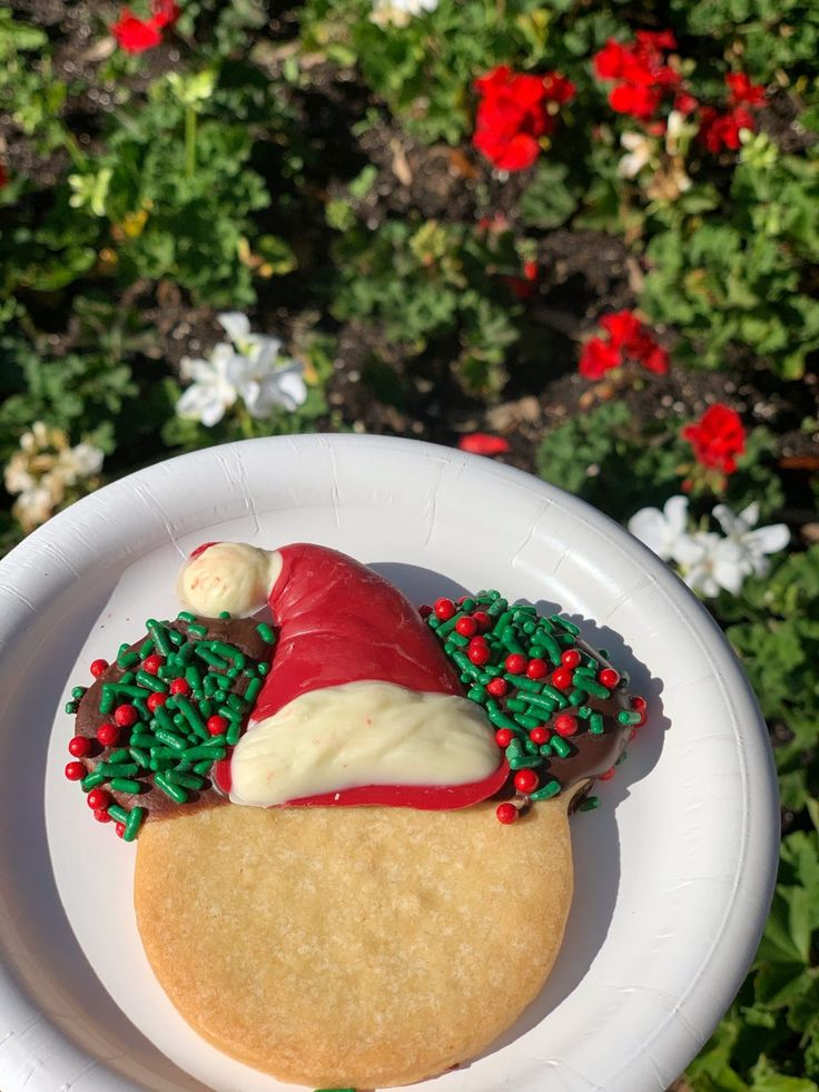 2019 Epcot International Festival of the Holidays Cookie