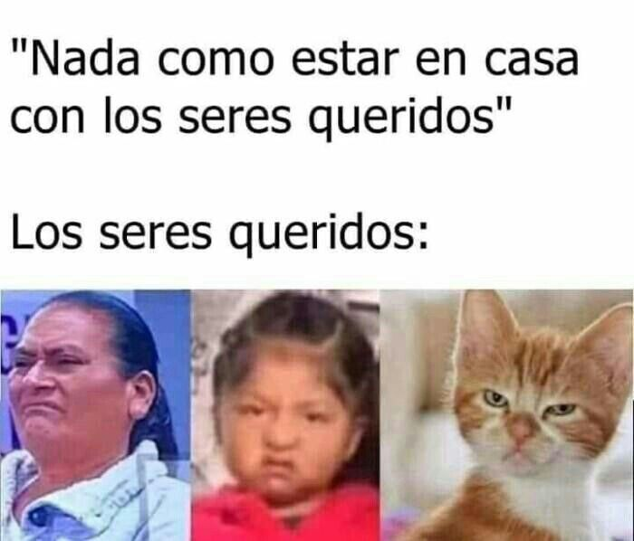 Pin De Jose Quintana En Memes V 2 Memes Sarcasticos Memes Divertidos Meme Gracioso