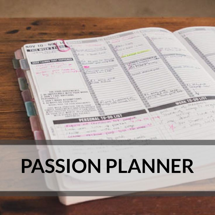Passion Planner via randomlittlefaves.com - all about charting your passion/goals/purpose with lots of room to write down to-dos and appts.