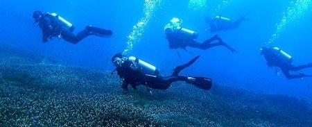 Bali plongée sous-marine, Bali plongée avec masques et tuba