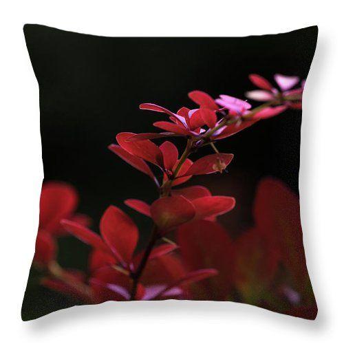 Natalya Antropova Throw Pillow featuring the photograph Red Twilight by Natalya Antropova