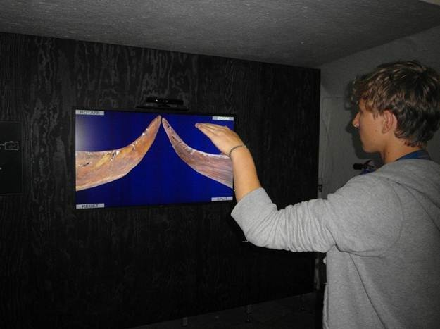 kinect viking museum