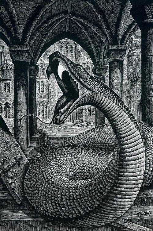 Harry Potter Cover Andrew Davidson