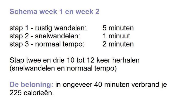 SPORTIEF WANDELEN WEEK 1 EN WEEK 2 Wandelen is een makkelijke manier om aan meer beweging te komen. Het is goed voor de doorbloeding en de spijsvertering. En omdat vooral been- en bilspieren worden gestimuleerd is het ook een goede remedie tegen cellulitis! www.sonjabakker.nl