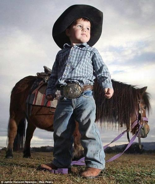 oh my goodness this is gonna be harry!! i can't wait to teach him to ride! :) and get him a pony <3