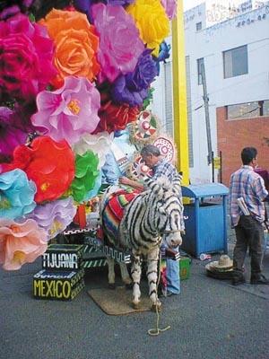 Tijuana, Baja California, México