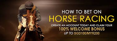 In the world of sports betting, horse racing is probably the biggest and most popular of them all. For many people, visiting the track. Horse race betting is useful and great advantage to new bettors. #horseracebetting https://onlinesportbetting.net.au/horse/