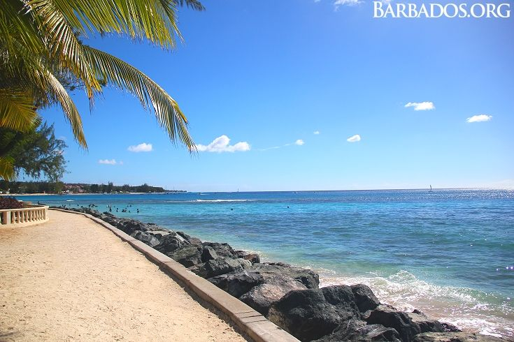 50 Best Beautiful Barbados Images On Pinterest